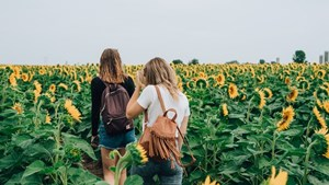 Friends_Walking_In_A_Sunflower_Field